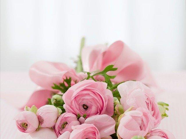 jakie kwiaty w sypialni